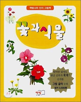 꽃과 식물
