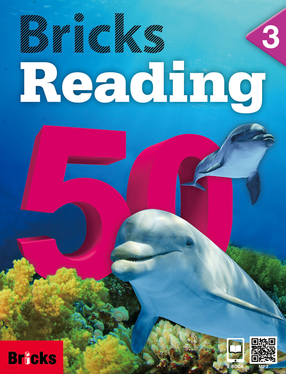 Bricks Reading 50 3