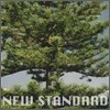 �����潺 (Peppertones) 2�� - New Standard