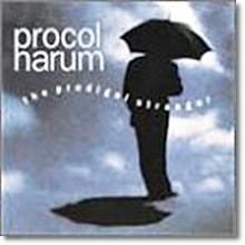 Procol Harum - The Prodigal Stranger (수입)