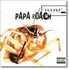 Papa Roach - In Fest (미개봉)