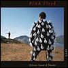 Pink Floyd (핑크 플로이드) - Delicate Sound Of Thunder (Live)
