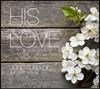 ������ ���� 1�� - His Love (���� ����)