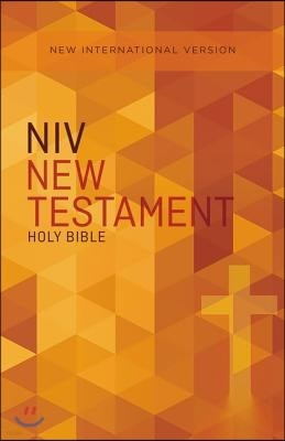 Outreach New Testament-NIV