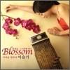 �̽��� - Blossom