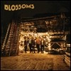 Blossoms (����) - Blossoms