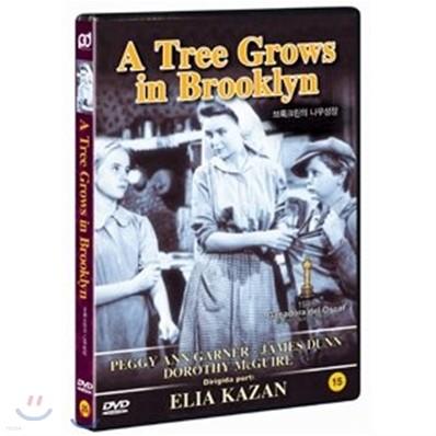 브룩클린의 나무 성장