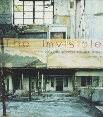 Peter Epstein (피터 엡스타인) - The Invisible