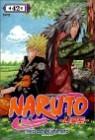 NARUTO 나루토 42