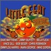 Little Feat And Friends - Join The Band