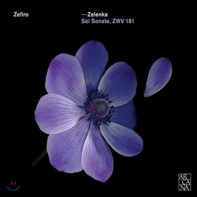 Zefiro 젤렌카: 여섯 개의 트리오 소나타 (Zelenka: Trio Sonatas Nos.1-6 - Sei Sonate, ZWV181) 제피로 앙상블