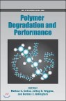 Polymer Degradation and Performance