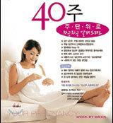임신출산 40주