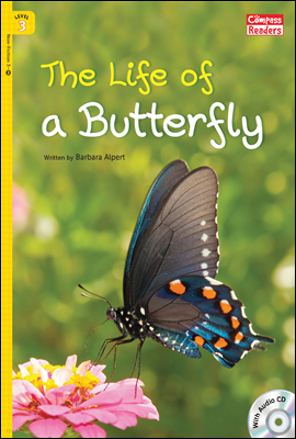 3-46 The Life of a Butterfly