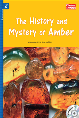6-39 The History and Mystery of Amber