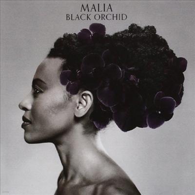 Malia - Black Orchid