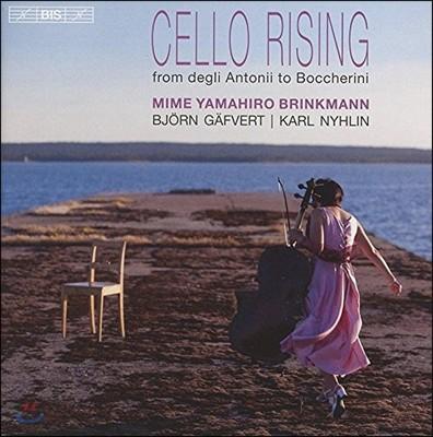 Mime Yamahiro Brinkmann 첼로 라이징 - 17세기 첼로 여명기부터 보케리니까지 (Cello Rising from Degli Antonii to Boccherini)