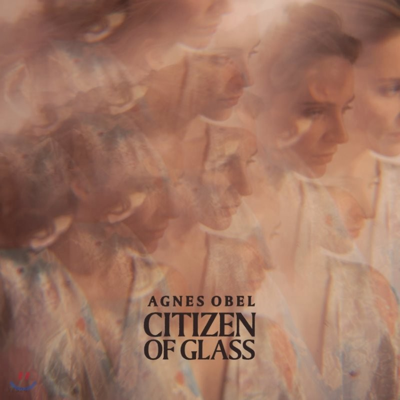 Agnes Obel - Citizen of Glass 아그네스 오벨 3집 [LP]
