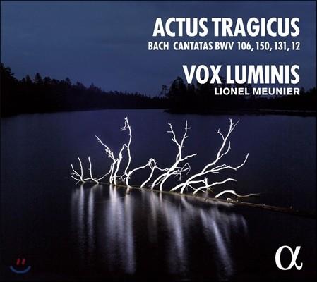 Vox Luminis 악투스 트라지쿠스 - 바흐: 칸타타 (Actus Tragicus - J.S. Bach: Cantatas BWV 106, 150, 131, 12) 복스 루미니스, 리오넬 뫼니에