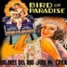 Bird Of Paradise (1932) (천국의 새)(지역코드1)(한글무자막)(DVD)