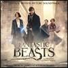 신비한 동물사전 영화음악 (Fantastic Beasts And Where To Find Them OST by James Newton Howard 제임스 뉴튼 하워드) [컬러 바이닐 2LP]
