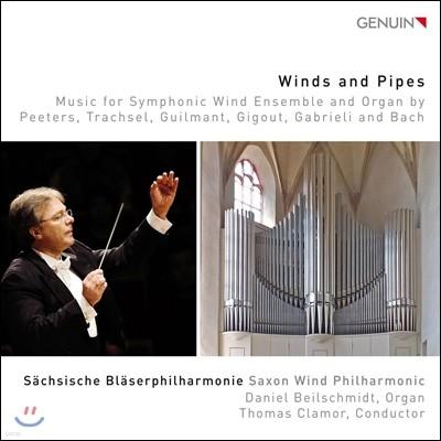 Saxon Wind Philharmonic 관악 앙상블과 오르간을 위한 작품집 (Winds and Pipes - Peeters, Trachsel, Guilmant, Gigout, Gabrieli, Bach) 작센관악합주단, 다니엘 바일슈미트