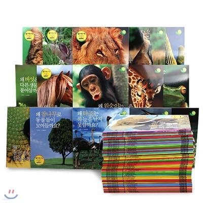[월드베스트]그린키즈 자연관찰(전50권)-2009년신판 페이퍼백