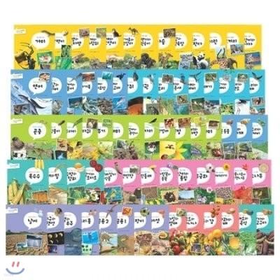 명품 꼬마 자연관찰 (페이퍼북70권)