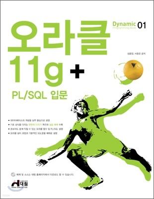 오라클 11g + PL/SQL