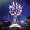 Aerosmith (에어로스미스) - Rock Donington 2014 [3LP+DVD Limited Edition]