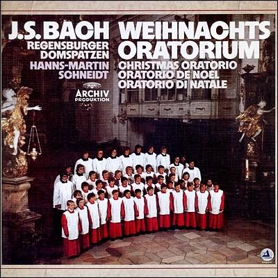 Regensburger Domspatzen 바흐: 크리스마스 오라토리오 (Bach: Das Weihnachtsoratorium)