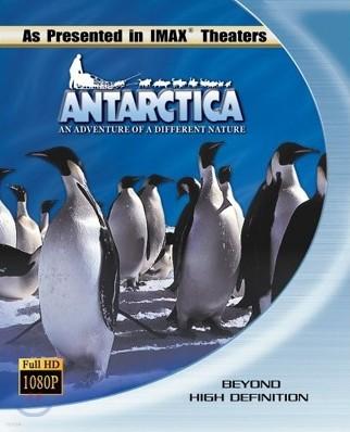 미지의 땅 남극 (우리말더빙) : 블루레이