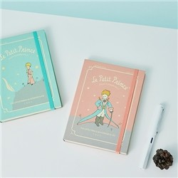 어린왕자 스터디플래너 vol.5