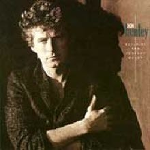 Don Henley - Building The Perfect Beast (수입)