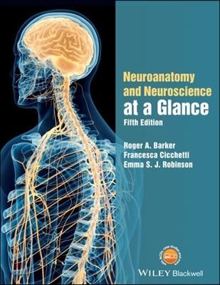 Neuroanatomy and Neuroscience at a Glance, 5/E