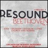 Martin Haselbock 리사운드 베토벤 5집 - 교향곡 9번 '합창' (Re-Sound Beethoven Vol.5 - Beethoven: Symphony Op.125 'Choral') 마르틴 하젤뵈크, 빈 아카데미 오케스트라
