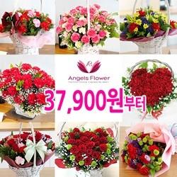 [엔젤스플라워]가정의달 전국 카네이션 꽃배달서비스 특가 행사전
