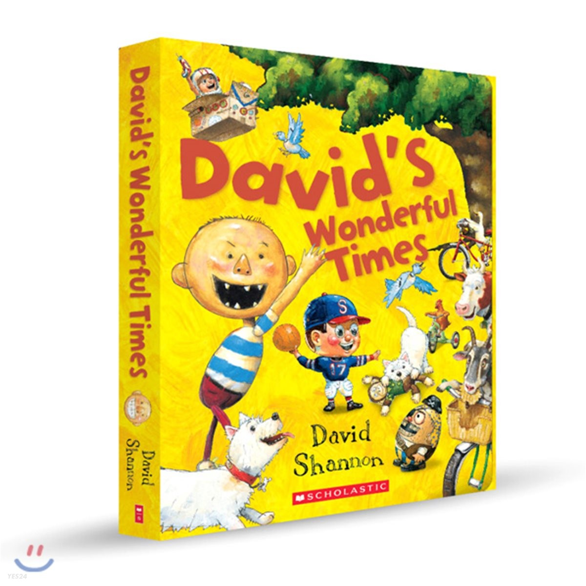 David's Wonderful Times