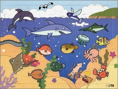 바다속 물고기