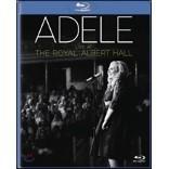 Adele - Live At The Royal Albert Hall 아델 라이브 앨범