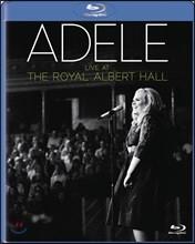 Adele - Live At The Royal Albert Hall 아델 2011년 런던 로열 앨버트 홀 라이브 앨범 [CD+Blu-ray]