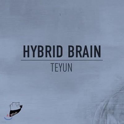 Teyun 2집 - Hybrid Brain