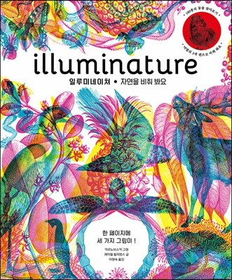 illuminature 일루미네이쳐 자연을 비춰 봐요