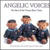 빈 소년 합창단 베스트 (Angelic Voices - The Best Of The Vienna Boys' Choir)