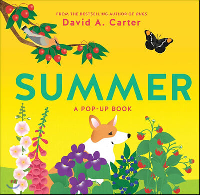 [스크래치 특가]Summer: A Pop-Up Book 여름 팝업북