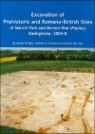 Excavation of Prehistoric and Romano-british Sites at Marnel Park and Merton Rise (Popley) Basingstoke, 2004-8