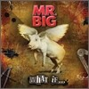 Mr.Big - What If...