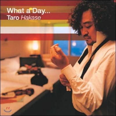 [중고] TARO HAKASE / What A Day...