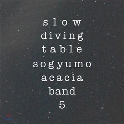 [중고] 소규모 아카시아 밴드 / 5집 Slow Diving Table
