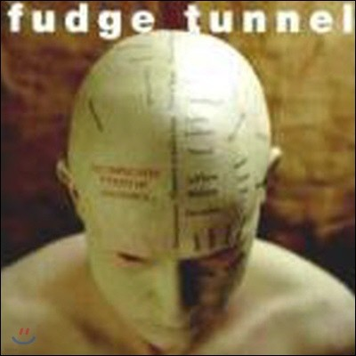 [중고] Fudge Tunnel / Complicated Futility Of Ignorance